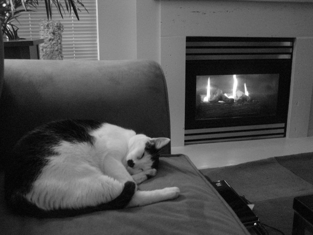 So comfy.