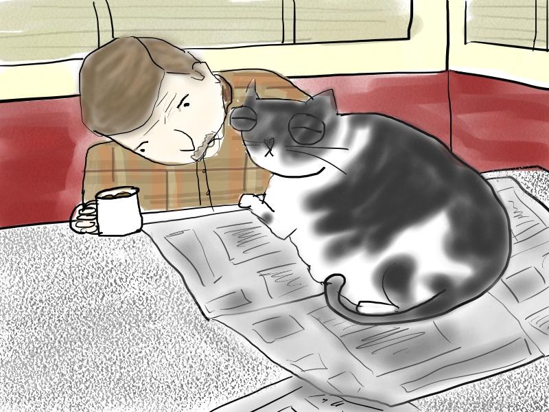 Newspaper Print Cat Toys