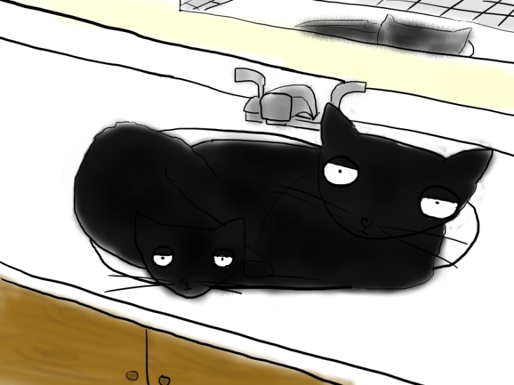 Sink Cats